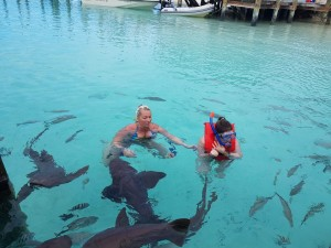 With with the sharks